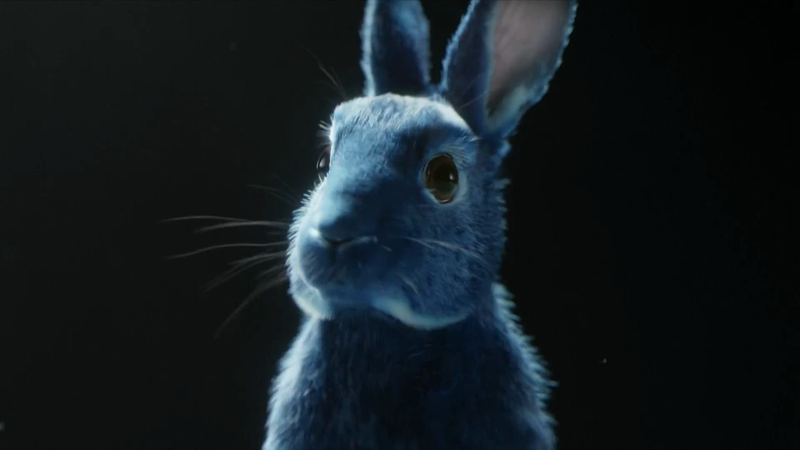 O2 - Follow The Rabbit