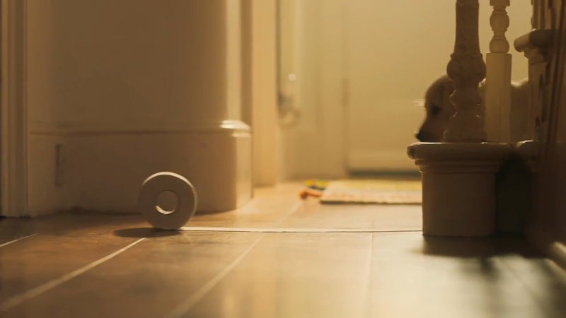 Adam Johnson directs for Andrex