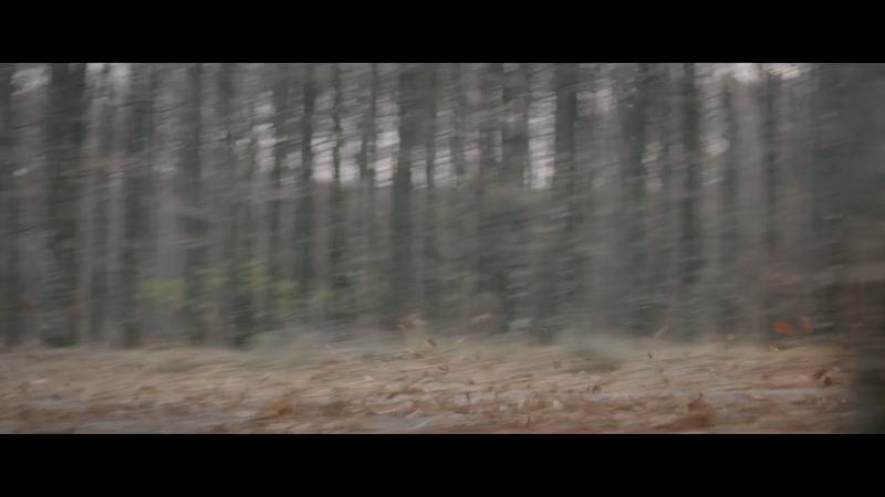 Dacia - Freedom