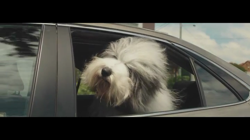 Dulux – Car Window