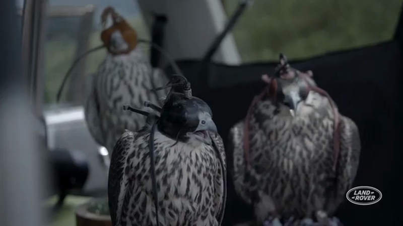 Land Rover - Flight of the Falcons