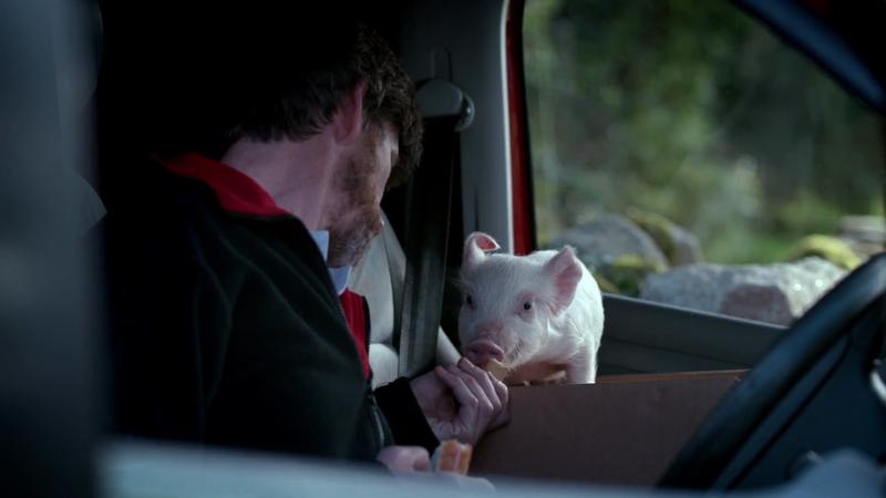 Piggy Sue - Vodafone