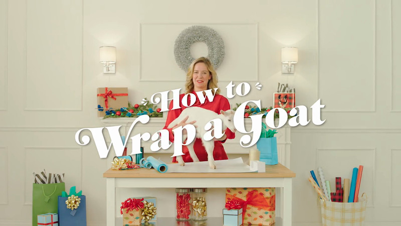 How To Wrap a Goat | Gift of Hope | Plan International Canada