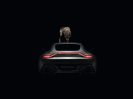 Aston Martin - Beautiful Won't Be Tamed