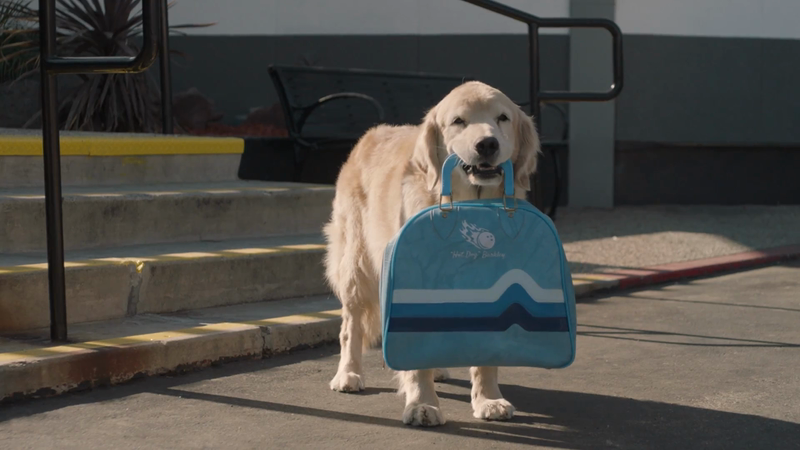"Subaru ""Dog Tested. Dog Approved."" 