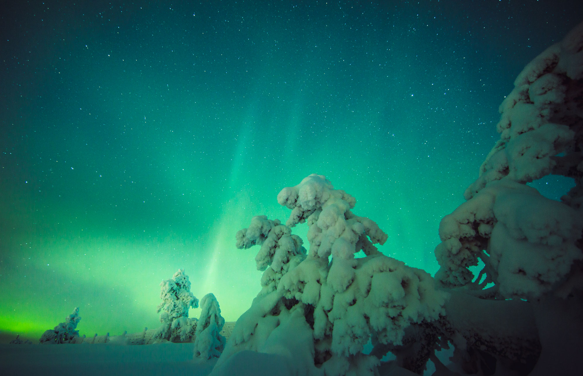Finland - Auroras