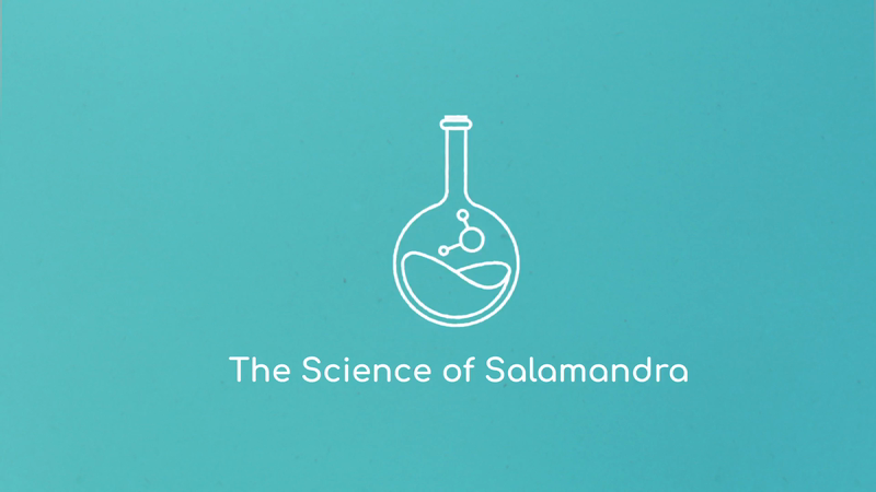 The Science of Salamandra - What we do!