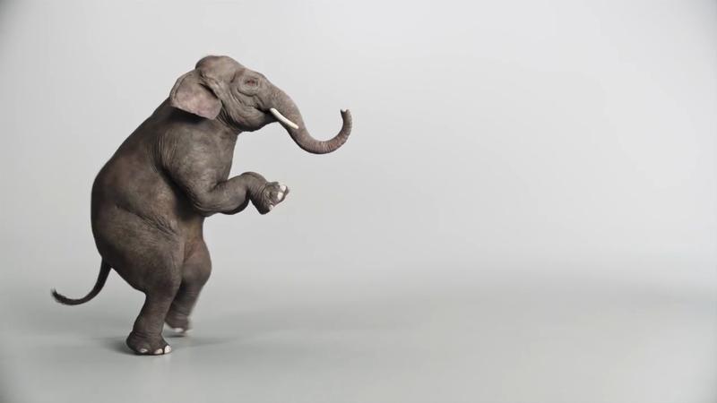 "Silencer Shop ""Elephant"""