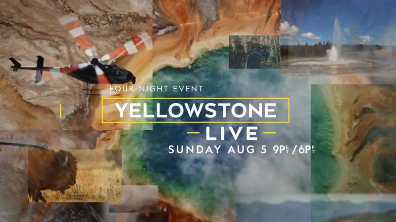 Yellowstone Live Promo | National Geographic