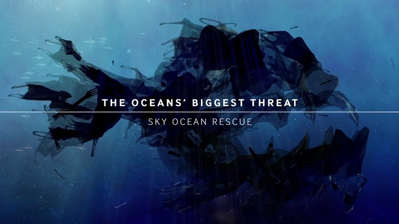 Sky Ocean Rescue: The Ocean's Biggest Threat