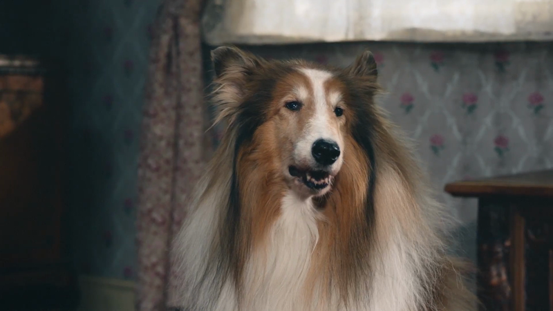 Amazon Fire TV - Lassie