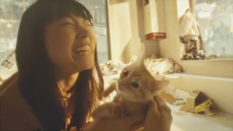 PS4 - Gravity Cat
