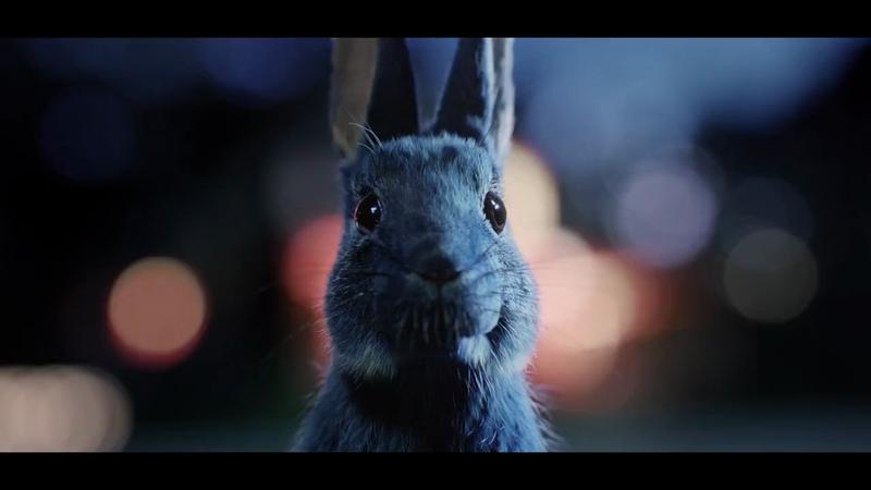 O2 - Follow The Rabbit