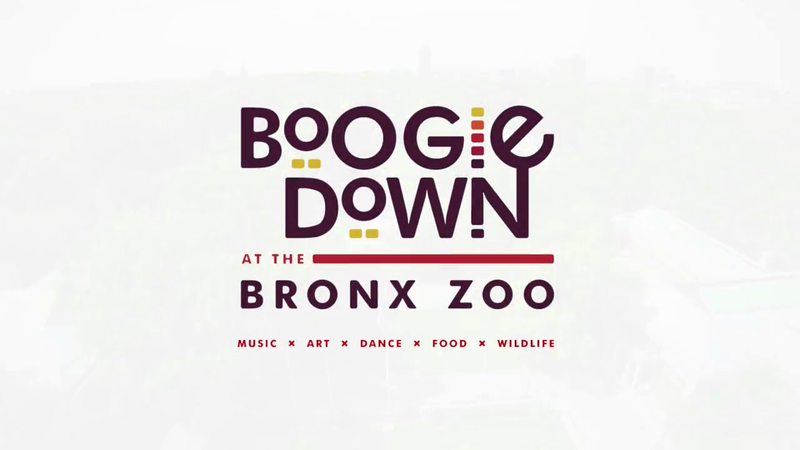 Boogie Down at the Bronx Zoo Docuseries :30 Teaser | Bronx Zoo
