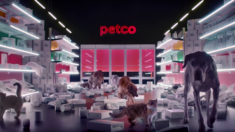 Petco: Cleaning House