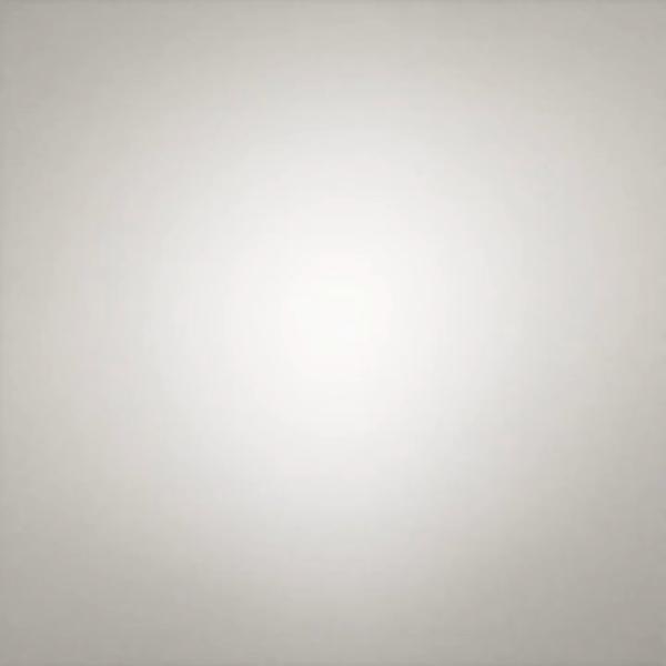 Glenfiddich - 12 YO