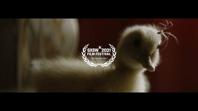 Stuffed - Trailer
