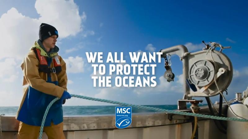 MSC Protect Tomorrow