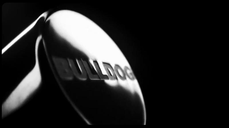 Bulldog - 'Begin Bold'
