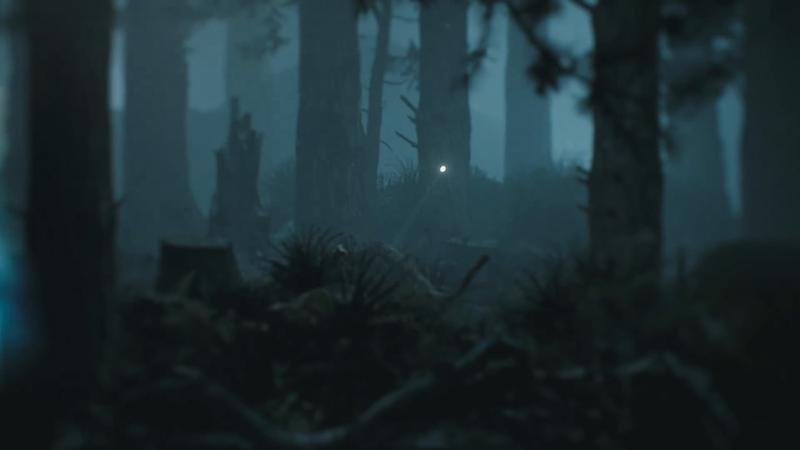 Solita - Fireflies